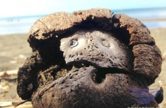 """Nature's own 'emoji' made from dried coconut on shores of Dancalan Beach.  (Photo by Eagle News photo correspondent Alvin """"Zaijian Chu"""" Melitante in Sorsogon/Eagle News Service)"""
