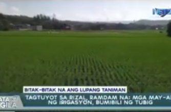 Tagtuyot sa Rizal, ramdam na; mga may-ari ng irigasyon, bumibili na rin ng tubig