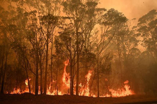 Bush fire raging through Australia