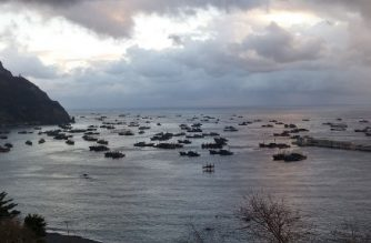 """A handout image taken on taken on December 6, 2016 and released by Global fishing Watch on July 22, 2020 shows Chinese fishing boats anchored in Sadong port, off the South Korean island of Ulleung-do, due to bad weather in North Korean waters. - Hundreds of Chinese fishing boats have been fishing illegally in North Korean waters catching hundreds of millions of dollars worth of squid, a study showed July 22, 2020. Competition from larger, better-equipped Chinese vessels was forcing North Korean fishermen to poach in Russian waters in turn, researchers at the American Association for the Advancement of Sciences (AAAS) found. (Photo by Seung-ho Lee / GLOBAL FISHING WATCH / AFP) / --- RESTRICTED TO EDITORIAL USE - MANDATORY CREDIT """"AFP PHOTO /  GLOBAL FISHING WATCH / Seung-ho Lee"""" - NO MARKETING NO ADVERTISING CAMPAIGNS - DISTRIBUTED AS A SERVICE TO CLIENTS  - NO ARCHIVE ---"""