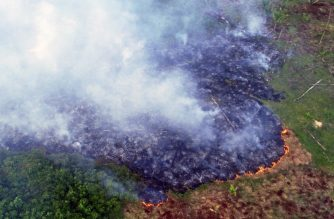 Aerial view of a large forest fire in Ramal do Cinturao Verde, in the Janauaca District, Careiro Castanho, 113 km from Manaus, Amazon region, Brazil, on August 4, 2020. (Photo by CHICO BATATA / AFP)