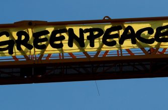 """Greenpeace activists hang, on a crane, a giant banner reading """"Greenpeace"""" during a protest against the French government's politics on environment, on the work site of Notre-Dame Cathedral, in Paris, on July 9, 2020. (Photo by GEOFFROY VAN DER HASSELT / AFP)"""