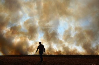 A man is seen in front of smoke rising from an illegally lit fire on a maize field that borders a rainforest reserve, in Sinop, Mato Grosso state, Brazil, on August 9, 2020. (Photo by CARL DE SOUZA / AFP)