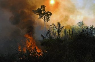 (FILES) In this file photo taken on August 15, 2020 smoke and flames rise from an illegally lit fire in Amazon rainforest reserve, south of Novo Progresso in Para state, Brazil. - The number of fires in the Brazilian Amazon last month was the second-highest in a decade for August, nearing the crisis levels that unleashed a flood of international condemnation last year, official figures showed on September 1, 2020. (Photo by CARL DE SOUZA / AFP)