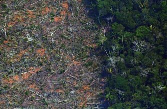 "(FILES) This file aerial photo taken on August 23, 2019 shows a deforested piece of land in the Amazon rainforest near an area affected by fires, about 65 km from Porto Velho, in the state of Rondonia, in northern Brazil. - An unusual coalition of 230 environmental organizations and Brazilian agribusiness companies sent President Jair Bolsonaro on September 15, 2020, a letter proposing to halt deforestation ""quickly and permanently, especially in the Amazon region. (Photo by CARL DE SOUZA / AFP)"