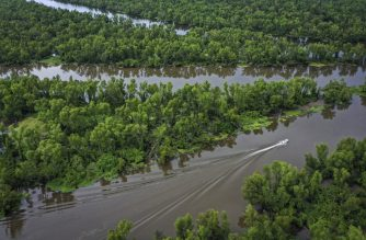 CHARENTON, LA - AUGUST 21: A boat makes its way along the Atchafalaya River in the Atchafalaya Basin, the largest wetland and swamp in the United States, on August 21, 2019 in Charenton, Louisiana. According to the group Atchafalaya Basinkeeper, an organization dedicated to protecting the land, the Atchafalaya River has been gradually filling up with dirt, sand and silt. Along with threats from logging and oil and gas drilling, the sedimentation could to lead to the basins potential destruction. The Basin's cypress swamps are adapted to withstand severe weather events, providing a buffer to slow storm surges from hurricanes and tropical storms.   Drew Angerer/Getty Images/AFP