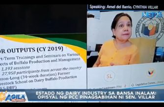 Villar castigates PHL Carabao Center chief for failure to properly use funds to increase carabao milk production