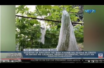 "WATCH: ""Gulayan sa Bakuran"" project ng Iglesia Ni Cristo sa Cauayan, Negros Occidental"