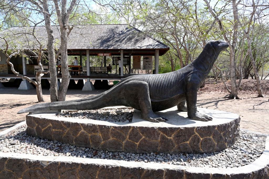 Indonesian activists slam 'Jurassic Park' plan for Komodo ...