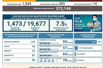 PHL COVID-19 tally at 373,144; 353 more recover