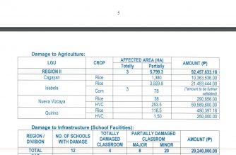 Screenshot of NDRRMC report/Courtesy NDRRMC
