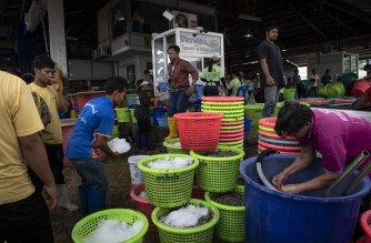 (FILES) In this file photo taken on September 20, 2018, Myanmar migrants and Thai workers gather fresh shrimps at a seafood market in the Thai coastal province of Samut Sakhon. - A Covid-19 coronavirus outbreak linked to a Thai seafood market in Samut Sakhon province surpassed 1000 cases on December 22, 2020, as authorities weigh up whether to introduce a wider lockdown. (Photo by Lillian SUWANRUMPHA / AFP)