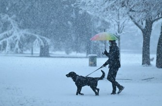 A man walks his dog in a park covered with snow on December 28, 2020 in the center of Milan. (Photo by Miguel MEDINA / AFP)