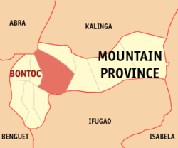 DOH confirms local transmission of UK variant in Bontoc, Mt. Province