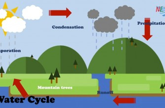 EBC Kids: Learn more about the water cycle