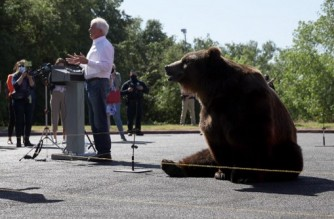 SACRAMENTO, CALIFORNIA - MAY 04: A 1,000 pound Kodiak bear sits behind California Republican Gubernatorial candidate John Cox as he speaks during a campaign rally at Miller Regional Park on May 04, 2021 in Sacramento, California. Republican candidate for California governor John Cox kicked off his campaign with a press event that featured a live 1,000 pound bear. He will continue his bus tour across California over the next few days.   Justin Sullivan/Getty Images/AFP (Photo by JUSTIN SULLIVAN / GETTY IMAGES NORTH AMERICA / Getty Images via AFP)
