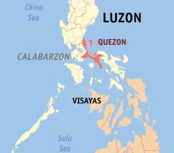 Quezon governor tests positive for COVID-19