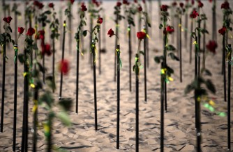 View of roses placed by the NGO Rio de Paz on Copacabana beach, Rio de Janeiro, in memory of the Brazil's half a million, 500,000 COVID-19 victims, June 20, 2021. AFP PHOTO/Carl de Souza - On the eve, Brazil became the second country after the United States to surpass 500,000 Covid-19 deaths as the South American giant grapples with a third wave of the pandemic. (Photo by CARL DE SOUZA / AFP)