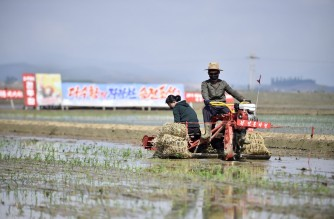 Workers plant rice at the Chongsan Cooperative Farm in the Kangso district of Nampho City on May 12, 2020. (Photo by KIM Won Jin / AFP)