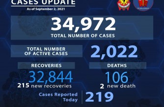 PNP reports 219 more COVID-19 cases
