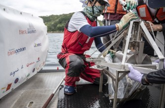 """This photo taken on October 14, 2021 shows researchers preparing to take sediment samples collected from a """"Smith-McIntyre"""" grab machine in the sea during a joint project of the French Tara Ocean Foundation and Japanese marine-station network Jambio onboard a boat off the coast of Shimoda, Shizuoka prefecture. - A boat's crew casts a net into the seemingly clean waters off Japan's Izu peninsula, but not to catch fish -- they are scooping up microplastics to learn more about the pollution's impact on marine life. (Photo by Charly TRIBALLEAU / AFP) / To go with AFP story Japan-environment-oceans-research-microplastics, FOCUS by Etienne BALMER and Hiroshi HIYAMA"""