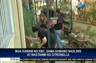 Eagle Broadcasting Corporation conducts citronella planting and clean-up drive in Pasong Tamo elementary school
